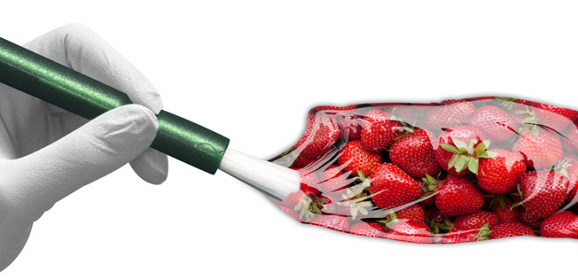 graphic with pain brush and strawberries